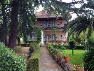 House with an astonishing garden - Ferreira do Zezere vacation rentals