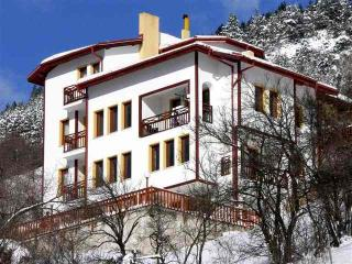Comfortable 6 bedroom Chalet in Momchilovtsi - Momchilovtsi vacation rentals
