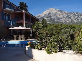 Hotel Beycik Palace am Lykischen Weg - Beycik vacation rentals