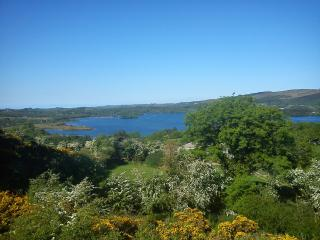 Lovely 4 bedroom House in Donegal - Donegal vacation rentals