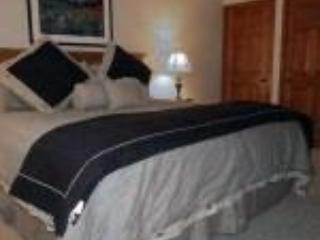 Summit County Condo Nov 29-Dec 6 - Image 1 - Dillon - rentals