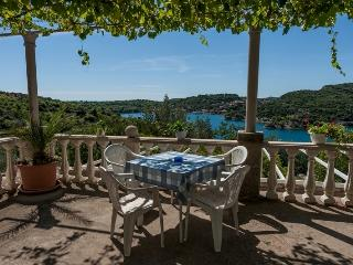 Damjanovic apartment 1. - Zaton vacation rentals