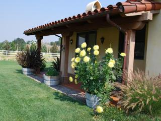Gold Medal Vineyard on 16 acre ranch. Elegant setting/full kitchen - Santa Ynez vacation rentals