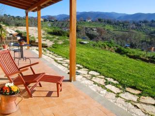 la casa nettarina - Lazio vacation rentals