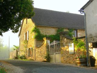 Old Stone Cottage in the Magical Dordogne - Condat-sur-Vezere vacation rentals