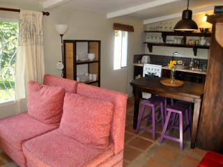 "Vacation Apt Mthly Discount Rent Boquete ""Maple"" - Boquete vacation rentals"