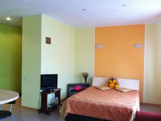 Nice Condo with Internet Access and Wireless Internet - Zelyonaya Polyana vacation rentals