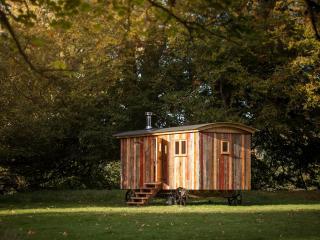 Nice 1 bedroom Cabin in Northumberland National Park - Northumberland National Park vacation rentals