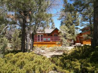 CHALET DEVORA IS NEXT TO BEAR MTN SKI RESORT/ ZOO - Big Bear Lake vacation rentals