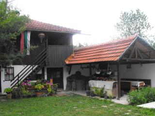 4 bedroom Villa with Internet Access in Troyan - Troyan vacation rentals