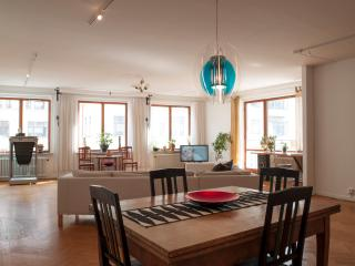 Nice Condo with Internet Access and Dishwasher - Malmö vacation rentals