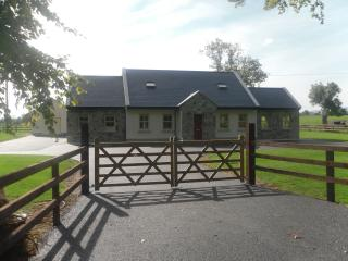 Nice Cottage with Internet Access and Television - Nenagh vacation rentals