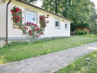 1 bedroom Cottage with Internet Access in Galluzzo - Galluzzo vacation rentals
