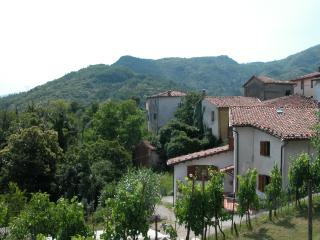 Tuscan holiday villa in Lucca with private garden and terrace, fantastic views - Gallicano vacation rentals