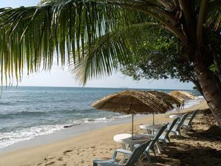 Condo Beach with water sports rentals - Seashore Sea View Condo, sleep 10 Across the beach - Rincon - rentals