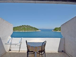 Apartments and Rooms Barbara - 53781-S1 - Island Lastovo vacation rentals