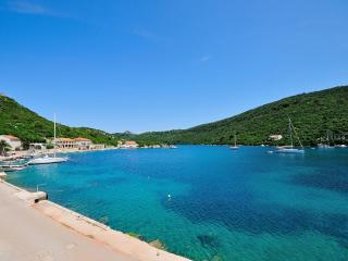 Apartments Rino - 53921-A1 - Island Lastovo vacation rentals