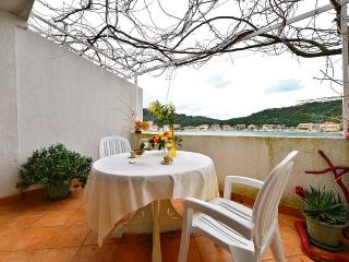 Apartments Ratko - 53931-A2 - Island Lastovo vacation rentals
