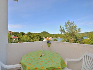 Apartments Daniela - 53951-A1 - Island Lastovo vacation rentals