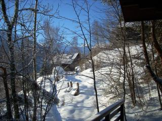 3 bedroom Chalet with Tennis Court in Aigueblanche - Aigueblanche vacation rentals