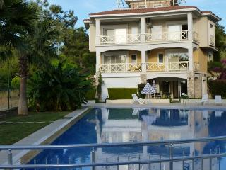 Beautiful Villa with Internet Access and A/C - Sogucak Koyu vacation rentals