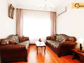 Family Apartment, Safe & Quiet - Istanbul vacation rentals