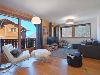 More Mountain 4* Apt Pleney - Ski In Ski Out - Morzine-Avoriaz vacation rentals