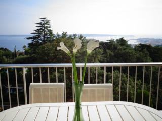 Appartement luxe sea view 140 m2 - Cannes vacation rentals