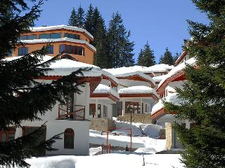 Affordable Chalet holiday. Quiet Village in a wood - Pamporovo vacation rentals