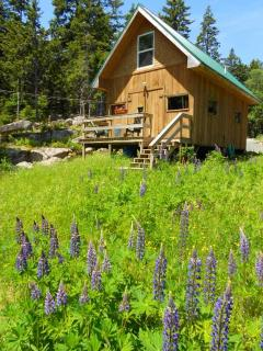 Vacation on Swans Island, Maine - OPEN MAY 2016 - Swans Island vacation rentals