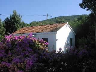 Lovely house near the sea - Molunat vacation rentals