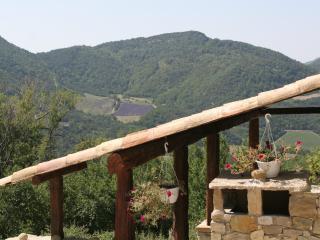 La Grange au milieu de 200h de bois privatif, calme et tranquilité assurés - Teyssieres vacation rentals