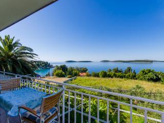 Apartments Vinka - 44061-A1 - Hvar vacation rentals