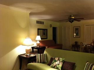 Beautiful Memphis Central Gardens Apartment - Memphis vacation rentals