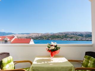 Apartments Nedjeljka - 28891-A1 - Pag vacation rentals