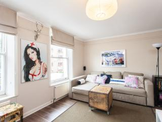 Spacious Central London Getaway with Terrace Wifi - London vacation rentals