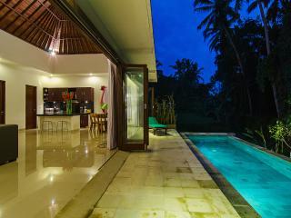 Ajun Villa, Private Pool, Ubud - Ubud vacation rentals