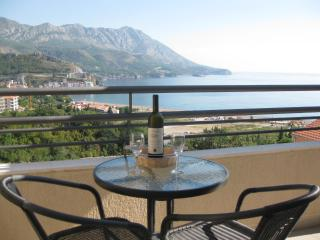 Becici View Apartment - Becici vacation rentals