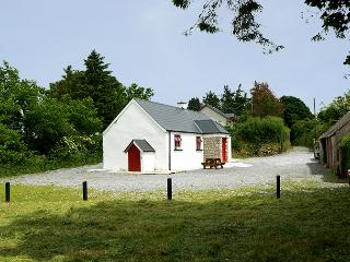 Bright Cottage with Central Heating and Parking - Tinahely vacation rentals