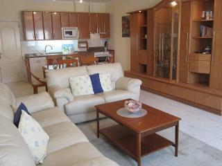 Colina Soleada Apartment - Benajarafe vacation rentals