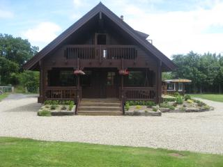 Lovely 3 bedroom Cabin in Gowran with Deck - Gowran vacation rentals