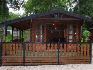 Lovely Cabin with Television and DVD Player - Aviemore vacation rentals