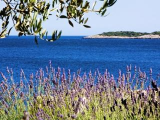 Vacation rentals in Island of Vis