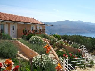 Villa Forestata - Lixouri vacation rentals