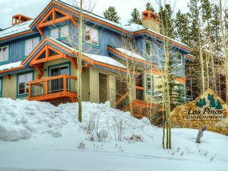 Ski La Vie - Breckenridge vacation rentals