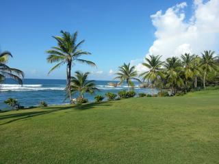West Coast villa 4 bedrooms free wifi internet ... - Prospect vacation rentals