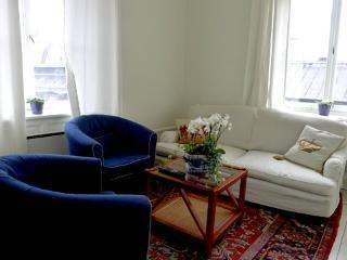 Gustavia 5 **** Cocoon  (STOCKHOLM) - Stockholm vacation rentals