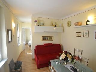 New apartment in characteristic Lucca street, sleeps 4, wi-fi, satellite TV - Lucca vacation rentals