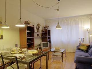 Violante de Hungria apartment - Barcelona vacation rentals