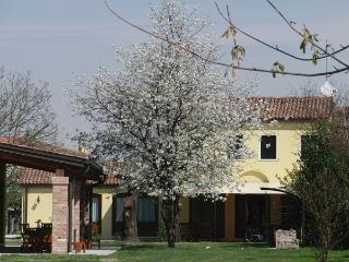Particolari del Brenta - Elisa near Venice - Oriago di Mira vacation rentals